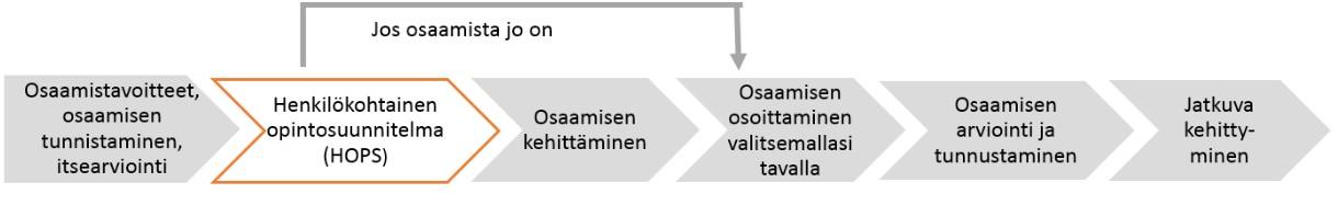 Osaamisperusteisen opettajankoulutuksen prosessi.jpg